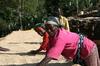 新入荷豆「エチオピア イルガチェフェ ウォテ」販売開始