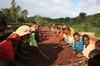 新入荷豆「エチオピア イルガチェフェ コンガ」販売開始